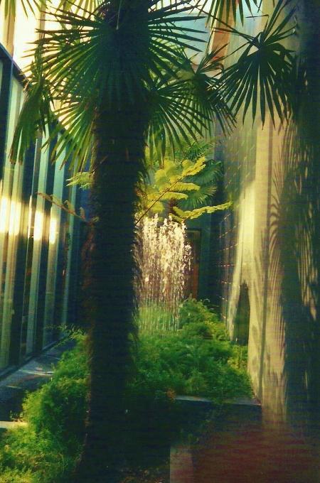 Palm Grotto