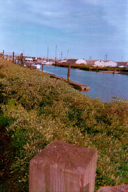 Waterway pathway