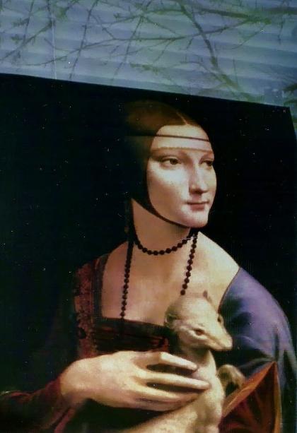 Leonardo's window