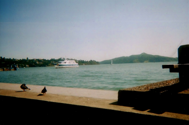 ferry coming